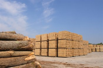 Production de conteneurs en bois